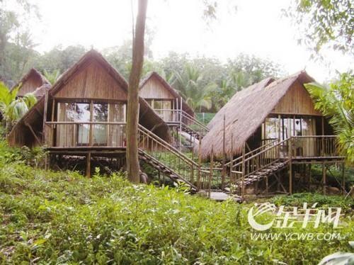 椰林中家庭式组合吊脚楼