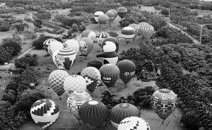 热气球旅游婚庆节已成为海口的一张城市名片。   海南日报记者 苏晓杰 摄