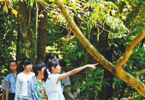 霸王岭国家森林公园 乐享天然氧吧
