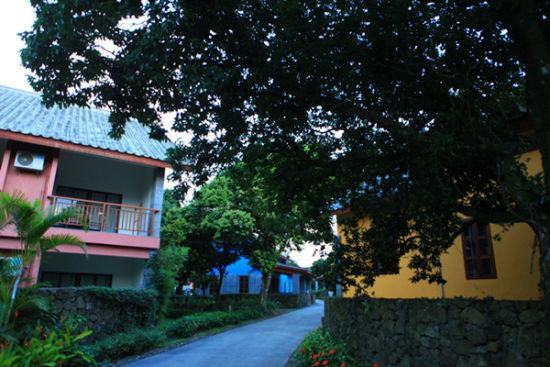 蜿蜒小道间的住宅
