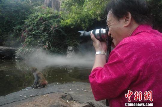 原中国摄影家协会主席朱宪民在猴岛拍摄猕猴 王辛莉 摄