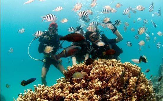 新浪旅游配图:海南灿烂潜水观光 图:环球游报