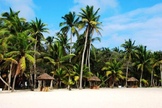 阳光沙滩 椰风海韵