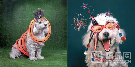 2013蛇年新春 动物元素入侵时尚界生动展现