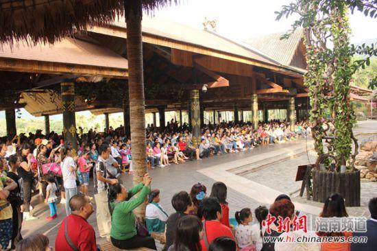 29日,槟榔谷景区游人如织,观看槟榔舞表演的游客众多,现场座无虚席。
