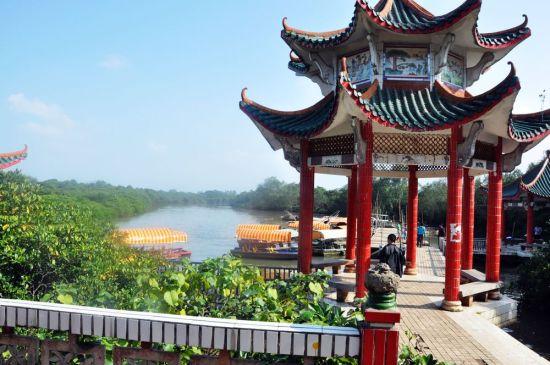 长宁头村红树林保护区