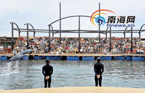2月11日,约有6000人次游客来到陵水分界洲岛感受小岛魅力。本报记者张杰通讯员童国强摄