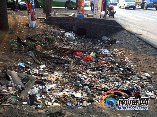 儋州市木棠镇加油站一带堆放的垃圾。(通讯员谢曦摄)