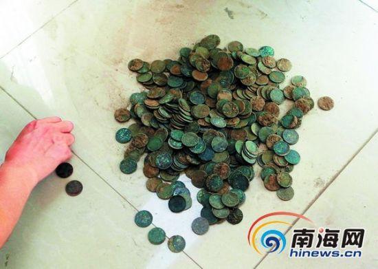 打地基挖出大量铜钱,事发三亚崖城镇城西村委会,该地基所在地原为一大户人家果园
