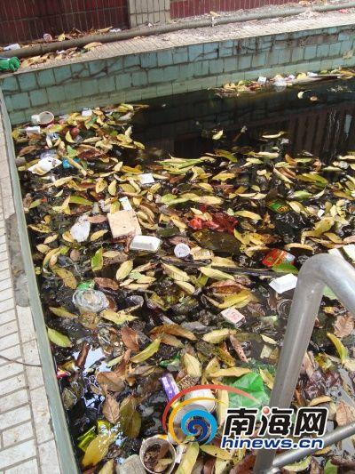 别墅小区游泳池变臭水池,生活垃圾到处都是(南海网见习记者杨曦)