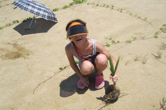 奕宝捡到一个漂流至此的椰子