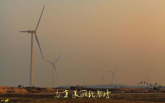 随处可见的大风车