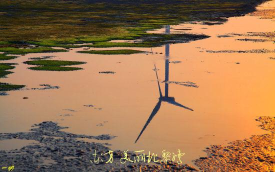 良好的湿地环境