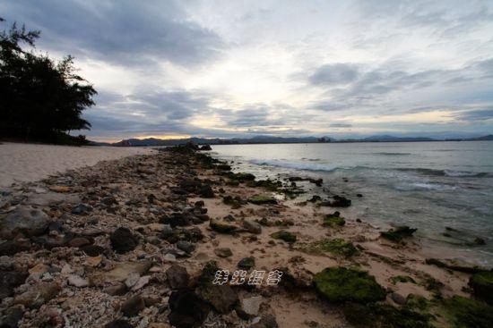 当退潮时,原来淹没于海底的珊瑚礁露出了水面
