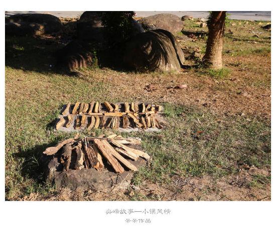 日光浴中的木柴