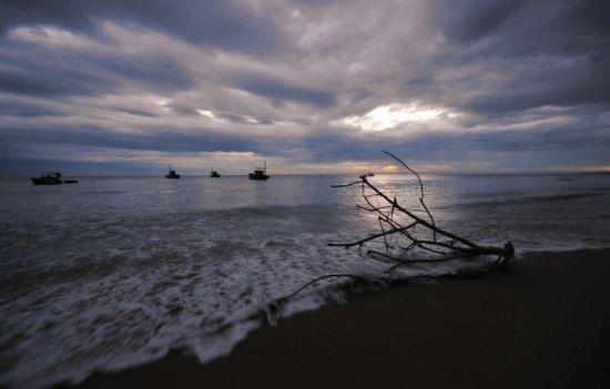 岸上的风景