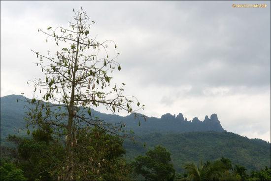 七仙岭的美景