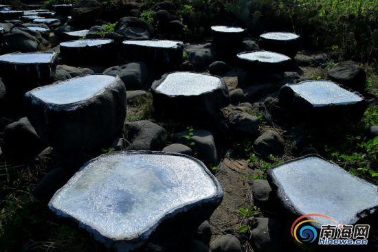 2013年4月23,儋州千年古盐田是我国最早也是最后一个日晒制盐点,距今1200多年,总面积750亩,有7300多个形态各异的砚式盐槽,年产量500吨。