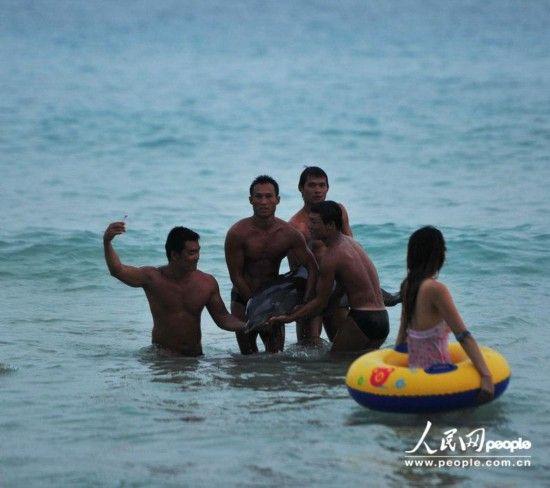 众人将已经奄奄一息的海豚抬出水面拍照。