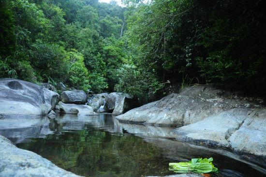 清澈透凉的山泉水