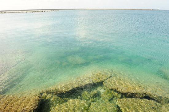 西沙群岛是我国南海诸岛四大群岛之一
