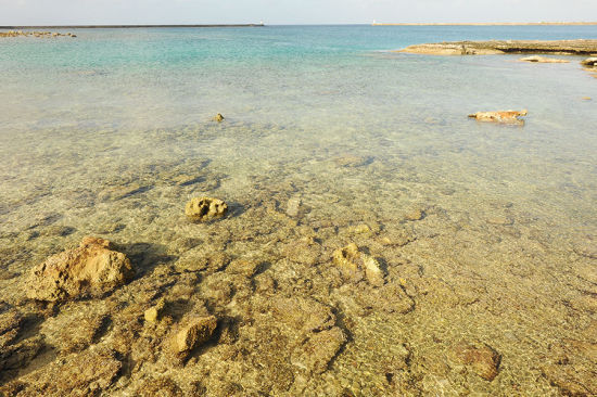 清浅的沙滩