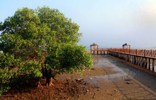 雨后的栈桥(摄影by墨海小舟)