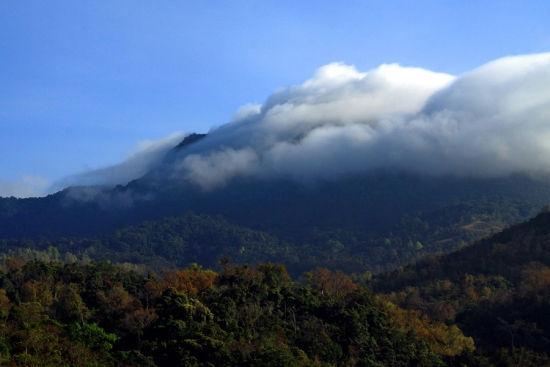 山上烟雾缭绕