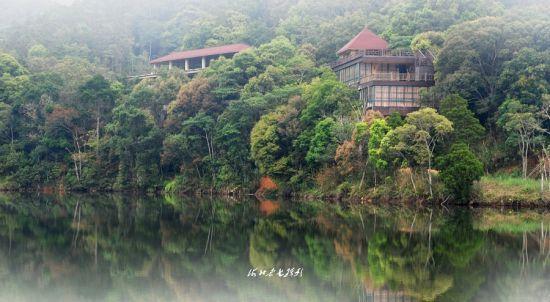 隐藏山林的房屋
