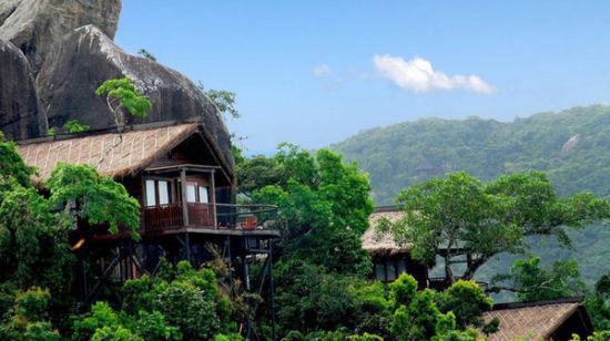 热带天堂的鸟巢小屋