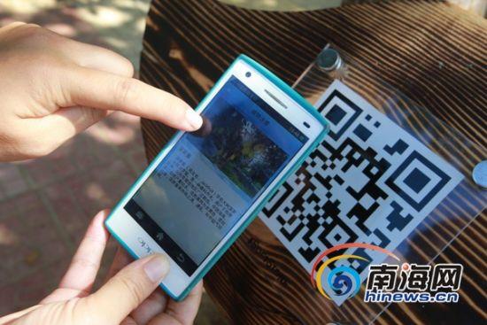 在万宁文通村,游客只要打开手机中智慧兴隆旅游APP软件中的寻宝拼图游戏,在游览途中寻找二维码标牌,手机轻扫二维码,就会立马出现对该植物图文并茂的简介。(南海网记者张茂摄)