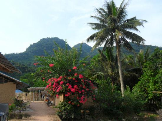 海南大山深处的村落