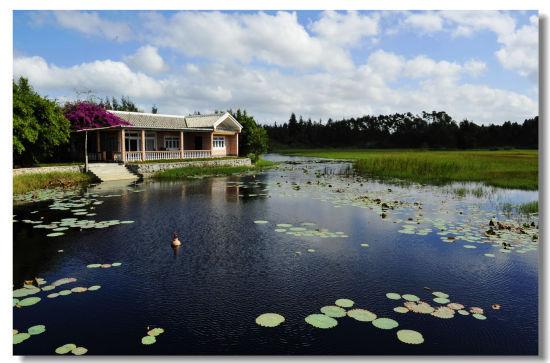 湿地边简欧风格的小房子