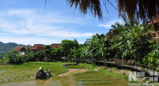 海南三亚黎族风景图片