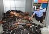 警方销毁4313支枪