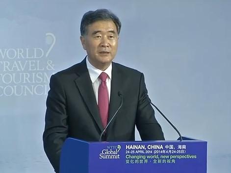 国务院副总理汪洋出席开幕式并致辞