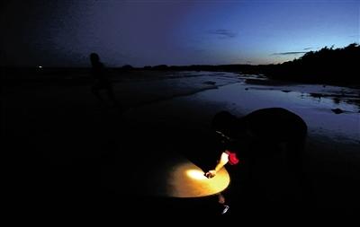 在文昌龙楼镇的海边抓螃蟹。海南日报记者 张杰 摄
