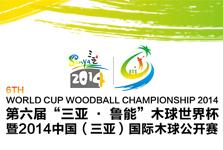 2014第六届世界杯木球锦标赛