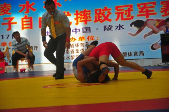 """陵水杯""""2014年全国女子自由式摔跤冠军赛"""