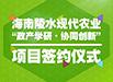 海南陵水现代农业