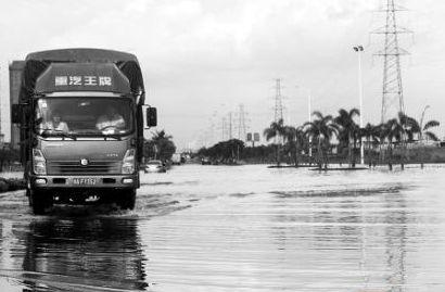 椰海大道水患依旧