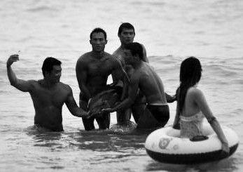 救生员间接害海豚